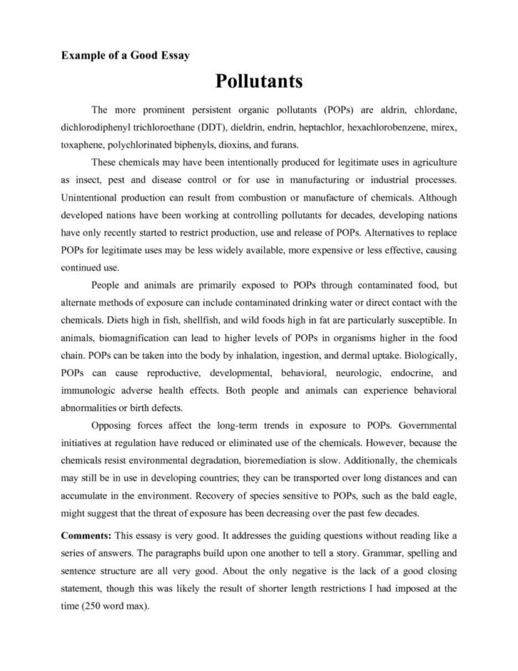 What Is A Critical Response Essay