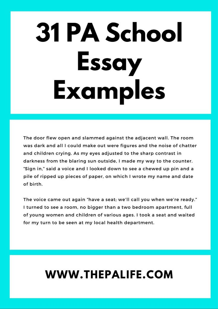 Full Size of Pa School Essay Examples
