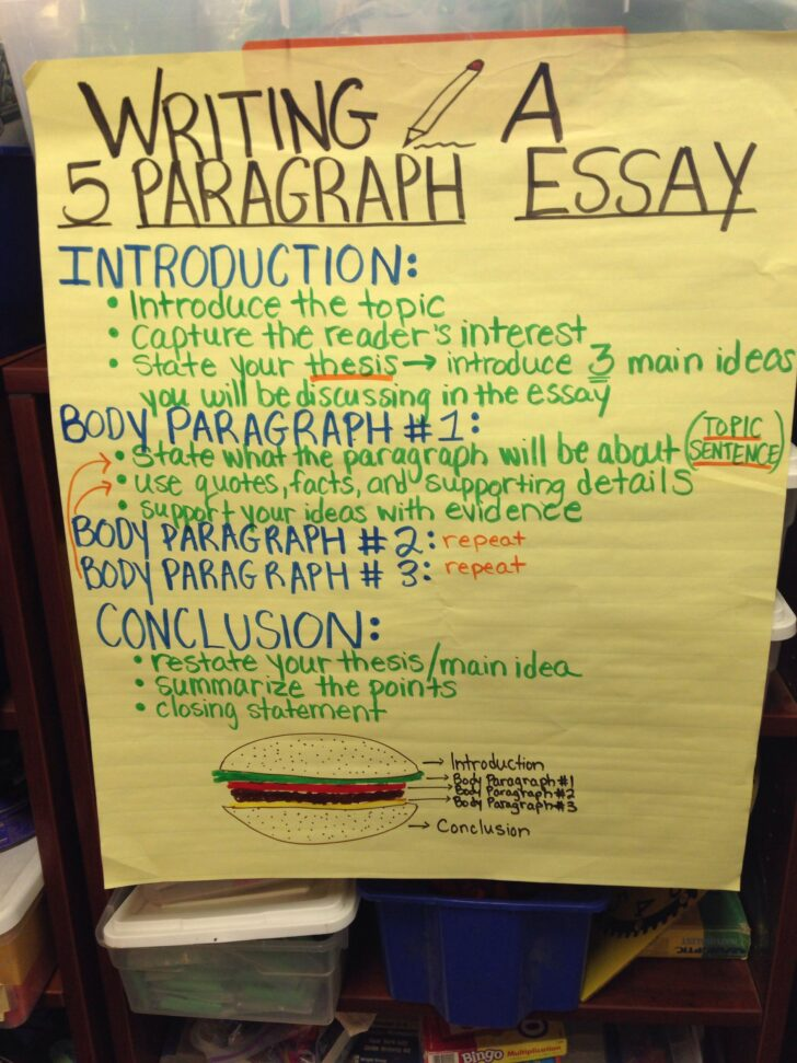 Do College Essays Have To Be 5 Paragraphs Essay