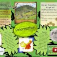 Thumbnail Size of Environmental Issues Essay Brainly
