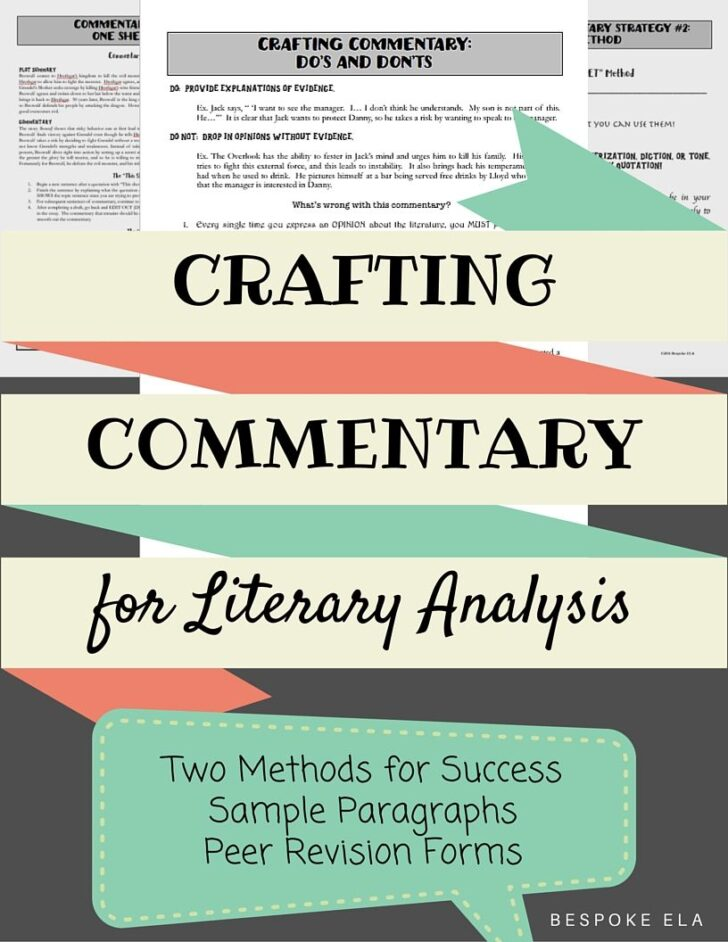 Commentary Analysis Essay Example