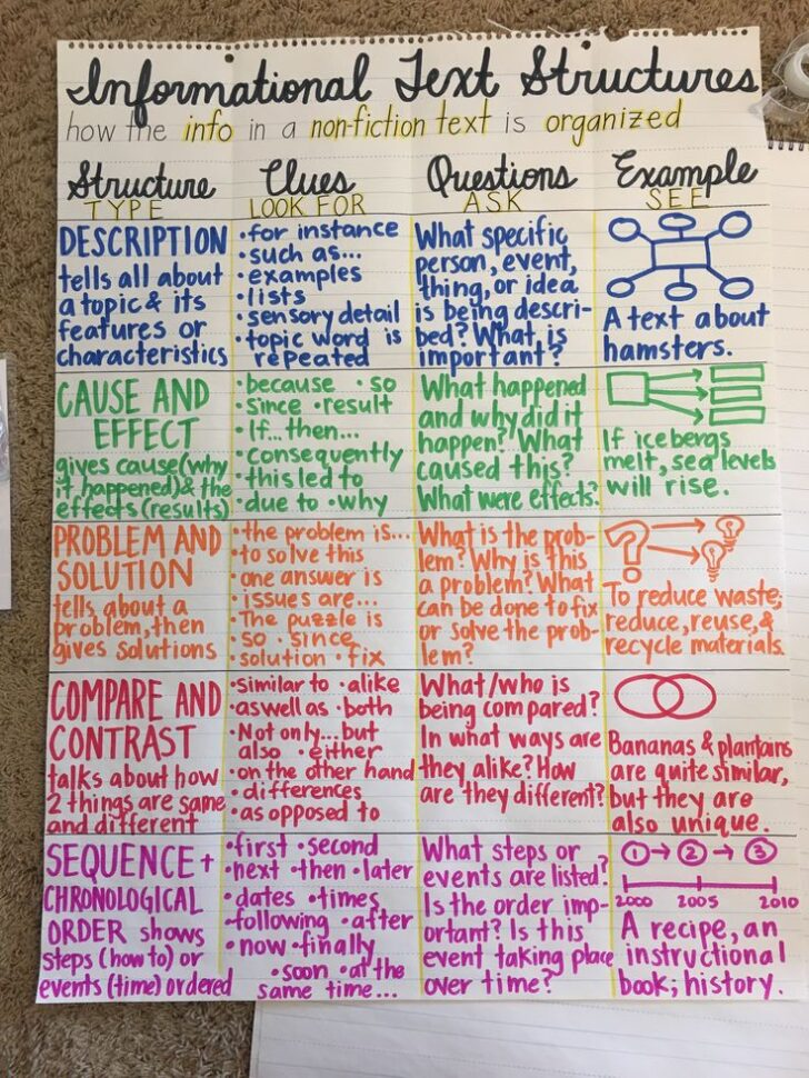 Informative Essay Text Structure