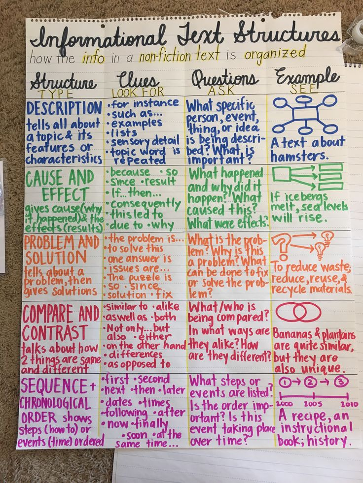 Full Size of Informative Essay Text Structure