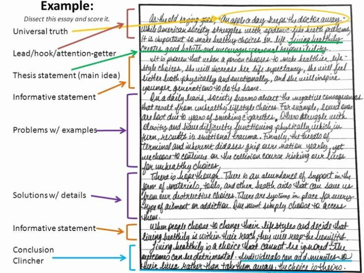 What Makes A Classification Essay