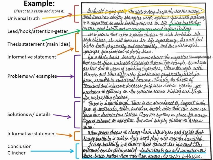 Full Size of What Makes A Classification Essay
