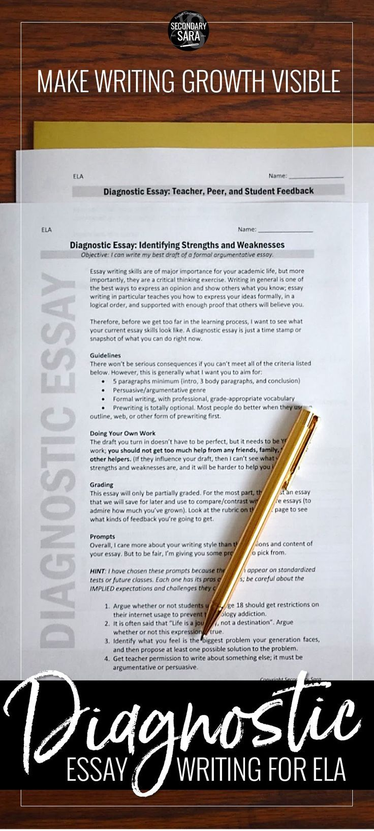 Full Size of How To Write A Good Diagnostic Essay