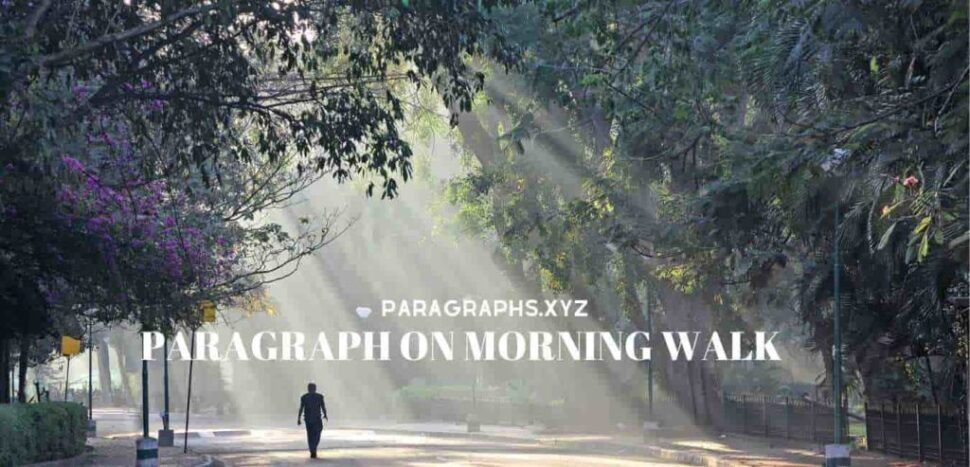 Large Size of Morning Walk Essay In English 100 Words