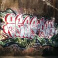 Thumbnail Size of Is Graffiti Considered Art Or Vandalism Essay
