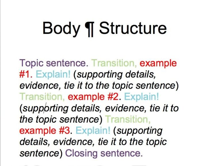 Essay Body Paragraph Structure Example