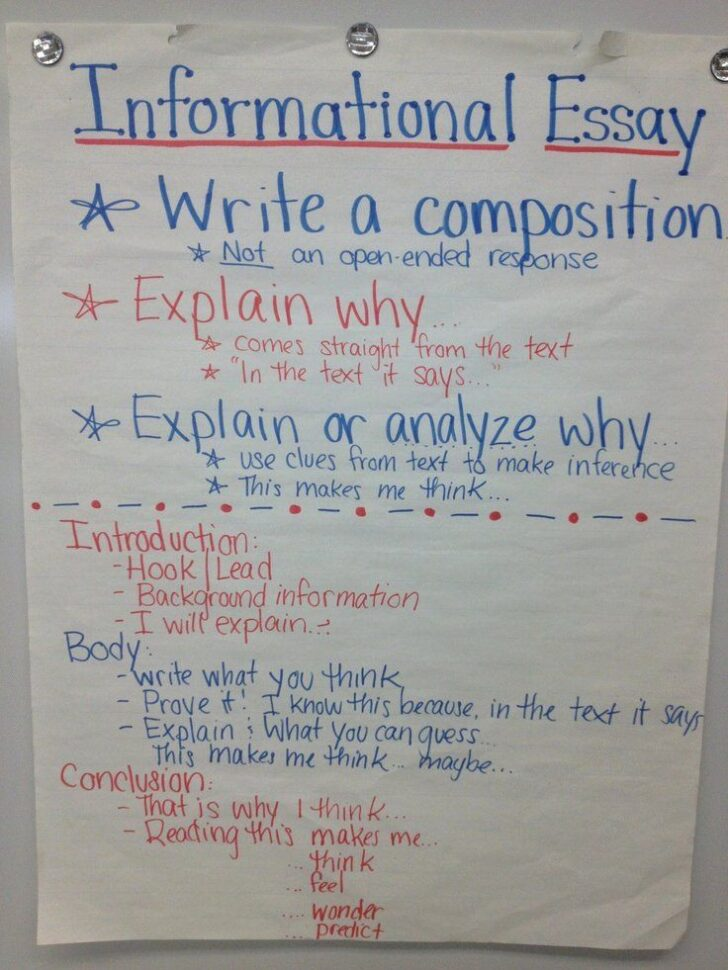 How To Write An Essay For 5th Graders