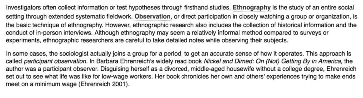 Ethnographic Observation Essay Example