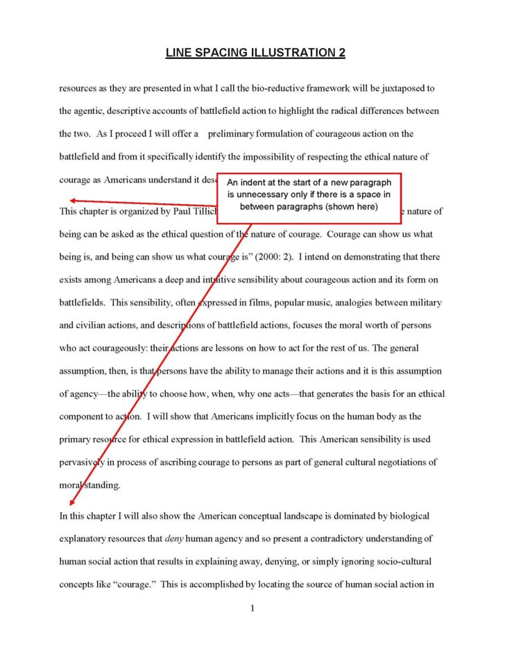 Double Spaced Essay Example