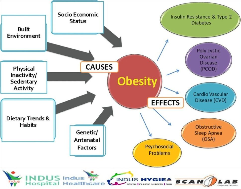 Large Size of Three Causes Of Obesity Essay