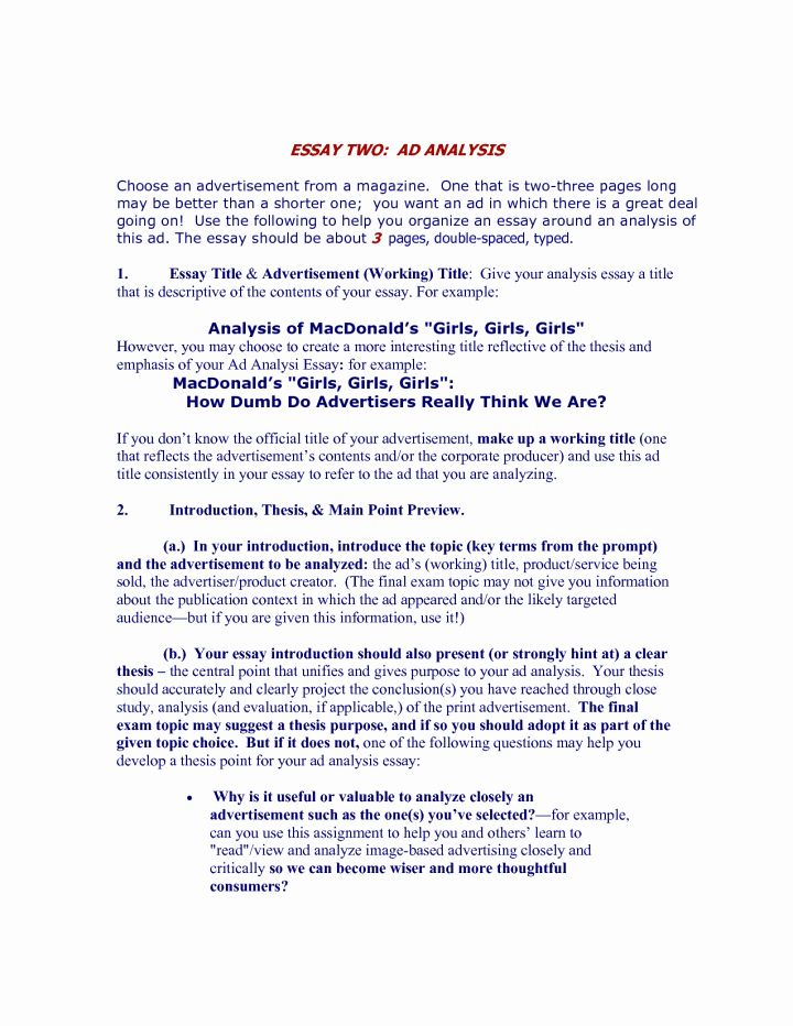 Analytical Essay Example Sample