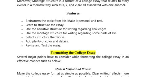 College Essay Format Templates Examples Templatearchive Word Uchicago Supplemental Essays