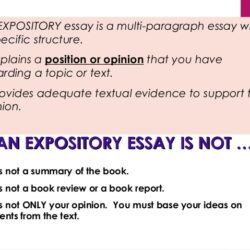 Expository Essay Presentation Writing The Is An Powerpointrussellrodrigo For And Against What