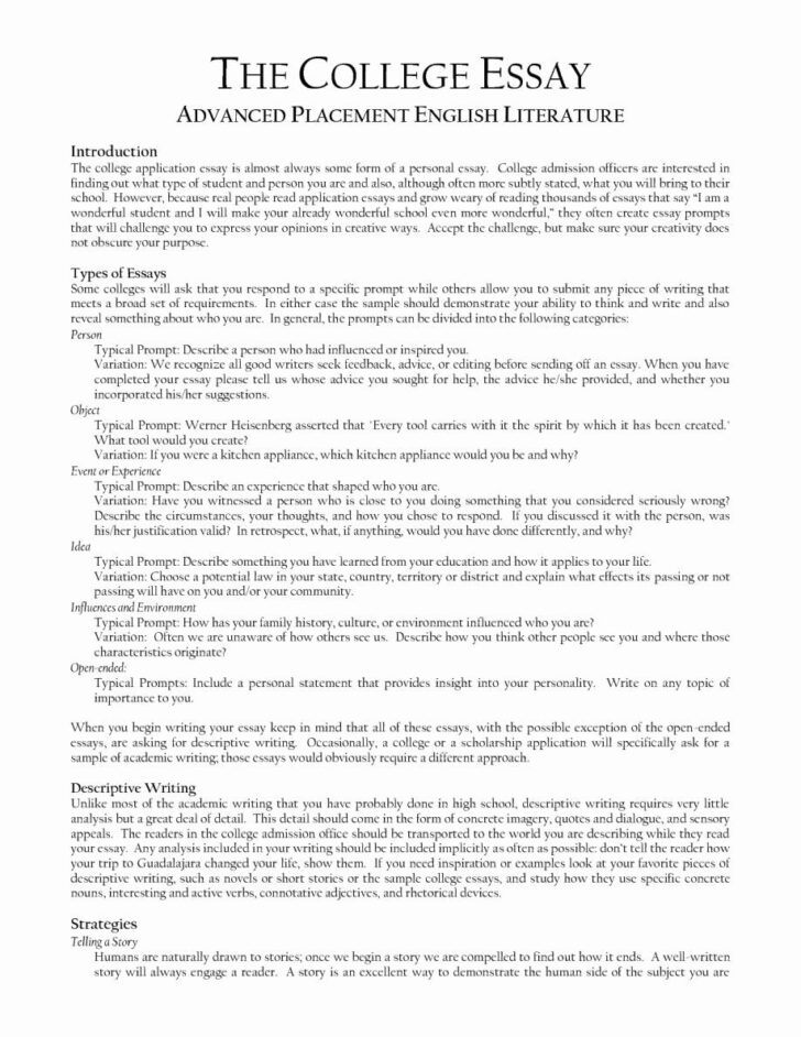 College Application Essay Guidelines