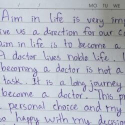 My Aim To Become Doctor Essay In English Want Cause And Effect Comparison Template I A