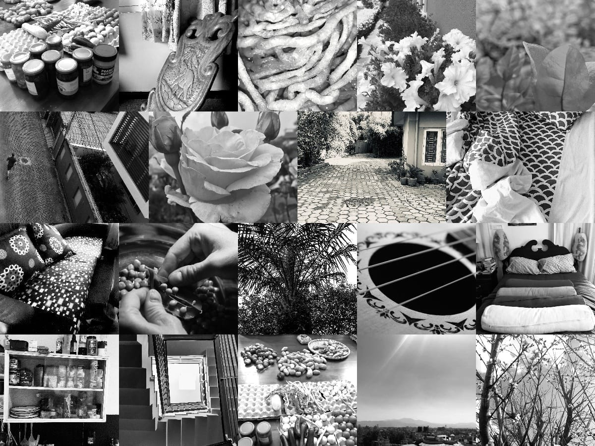 Full Size of Quarantine Photo Essay School Group Collage Compare And Contrast Example University