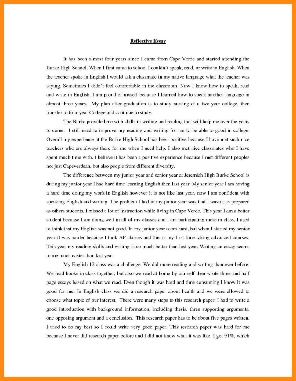 Large Size of Reflective Essay Examples Pdf Reflection Example English Of Photo Sqa Higher Personal