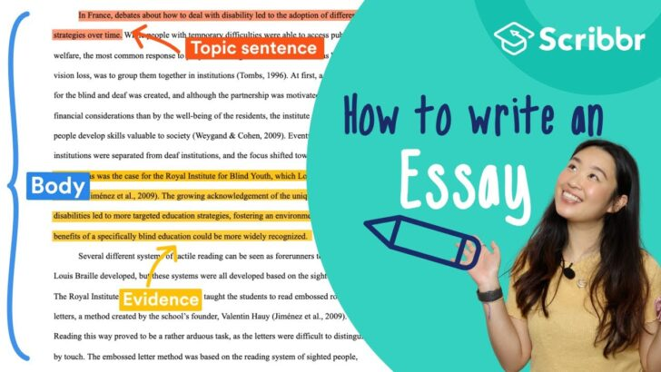 The Beginner Guide To Writing An Essay Steps Examples Write My Meaning Animal Rights